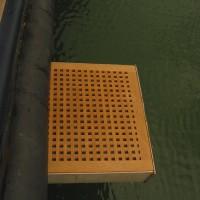 Divingboard01.JPG